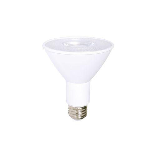 Ampoule Del PAR 30 DEL