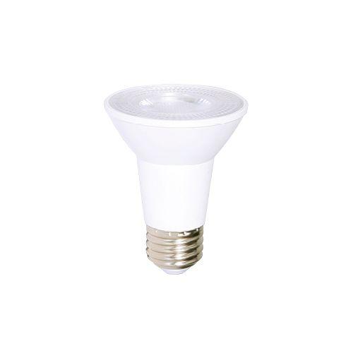 Ampoule Del PAR 20 DEL
