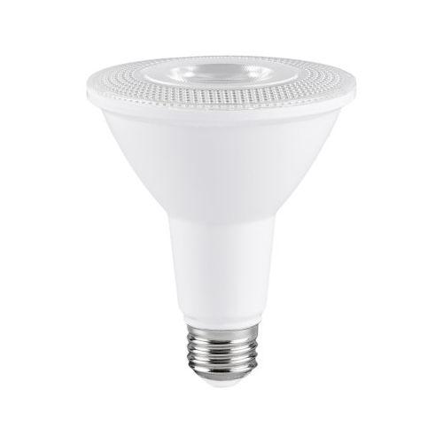 Ampoule Del PAR30 DEL