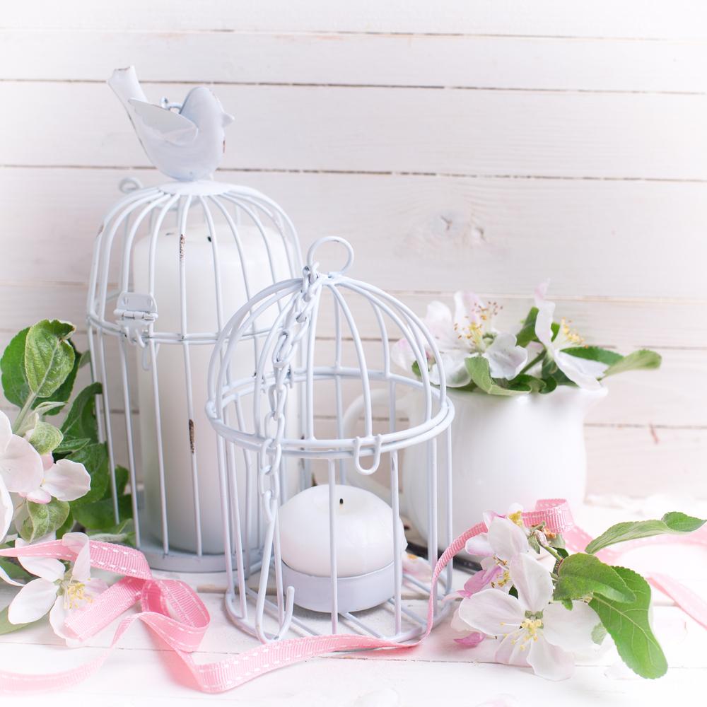 shabby cage